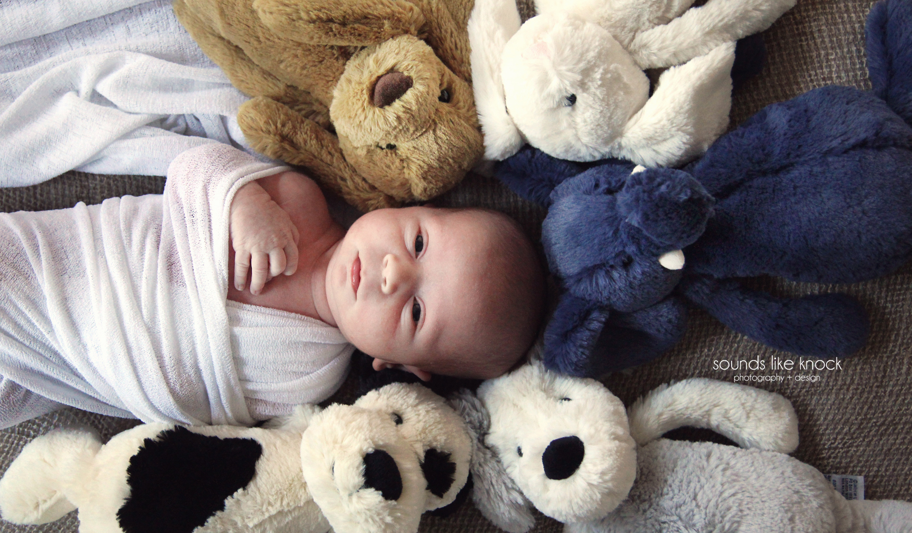 NEWBORNwithstuffedanimals